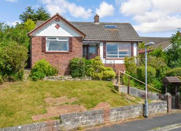 Thumbnail 4 bed detached house for sale in West Mount, Newton Abbot