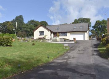 Thumbnail 3 bed detached house for sale in Llanwnnen Road, Lampeter