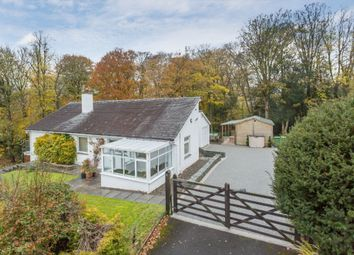 Thumbnail 4 bed detached bungalow to rent in Beckside, Rayrigg Rise, Bowness On Windermere, Windermere, Cumbria