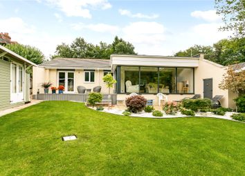 Thumbnail 3 bed bungalow for sale in Wick Lane, Englefield Green, Surrey