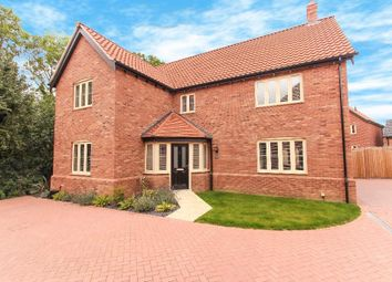 Thumbnail 4 bedroom detached house to rent in Snapdragon Close, Attleborough