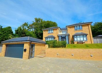 Thumbnail 4 bedroom detached house for sale in Park Road, Temple Ewell, Dover, Kent