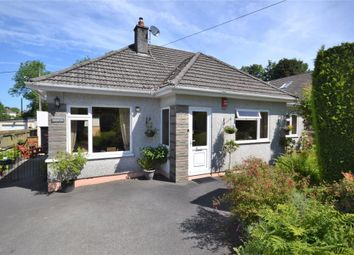 Thumbnail 3 bed detached bungalow for sale in Tors View Close, Tavistock Road, Callington, Cornwall