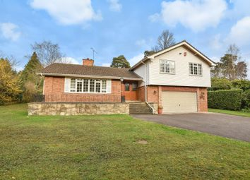 Thumbnail 4 bed detached house to rent in Waverley Drive, Camberley