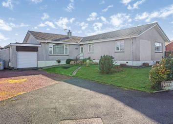 Thumbnail 4 bed detached bungalow for sale in Vendace Drive, Lockerbie