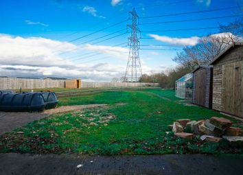 Thumbnail 4 bed detached bungalow for sale in Street Lane, Willitoft, Goole