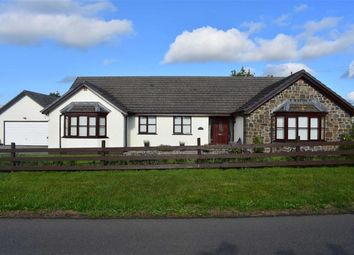 Thumbnail 4 bed detached bungalow for sale in Bancyffordd, Llandysul, Carmarthenshire