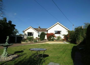 Thumbnail 4 bed detached bungalow for sale in Hill Road, Sandford, Winscombe