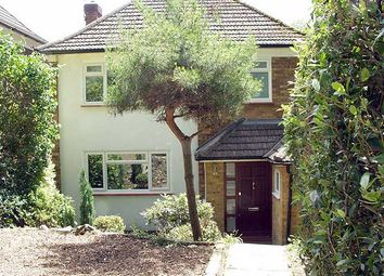 Thumbnail 3 bed detached house to rent in Auckland Road, Crystal Palace, London