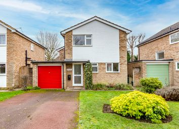 Thumbnail 3 bed detached house for sale in Westwood Avenue, Woodham