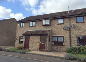 Thumbnail 3 bed property to rent in Lackford Close, Brundall, Norwich