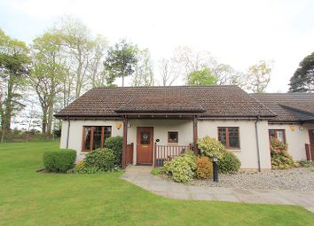 Thumbnail 2 bed semi-detached bungalow for sale in 17 Grant Place, Firhall, Nairn