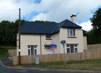 Thumbnail 4 bed detached house to rent in Bronllys, Brecon