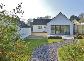 Thumbnail 3 bed detached bungalow for sale in Mill Lane, Cottesmore, Oakham