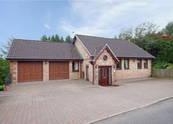 Thumbnail 4 bed detached house for sale in New Trows Road, Lesmahagow, South Lanarkshire