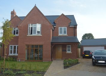 Thumbnail 4 bed detached house to rent in Braiswick Lane, Colchester