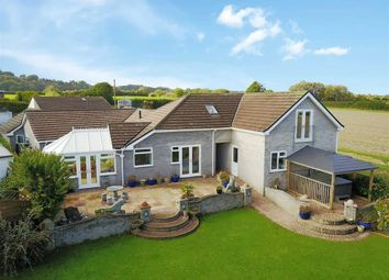 Thumbnail 5 bedroom detached bungalow for sale in Heather Way, Copythorne, Brixham