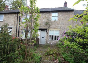 Thumbnail 2 bed terraced house to rent in Birches Nook Cottages, Stocksfield