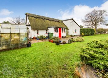 Thumbnail 3 bed cottage for sale in Hall Lane, Thompson, Thetford