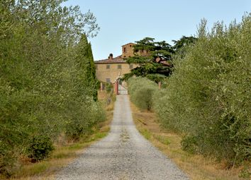 Thumbnail Farm for sale in Via Oliveto, Siena (Town), Siena, Tuscany, Italy