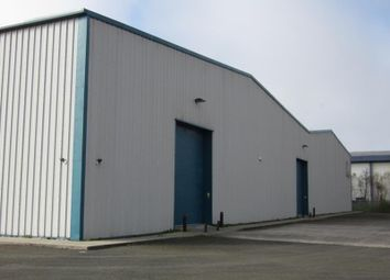Thumbnail Light industrial to let in Unit 2.2, Fabian Park, Off Ffordd Amazon, Crymlyn Burrows, Swansea, Swansea