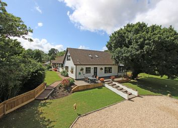 Thumbnail 6 bed detached house for sale in Brithem Bottom, Cullompton