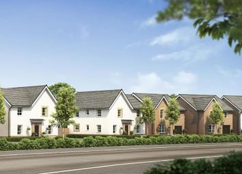"""Thumbnail 4 bed detached house for sale in """"Radleigh"""" at Stretton Road, Stretton, Warrington"""