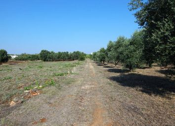 Thumbnail Land for sale in Ostuni, Brindisi, Puglia, Italy