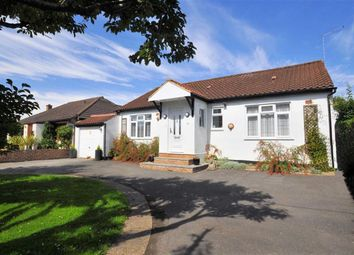 Thumbnail 3 bedroom detached bungalow for sale in Coppice Drive, Wraysbury, Berkshire
