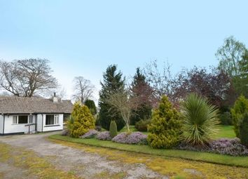 Thumbnail 3 bedroom bungalow for sale in 30 Beech Avenue, Nairn