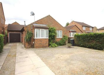 Thumbnail 2 bed detached bungalow to rent in Andrew Drive, Huntington, York