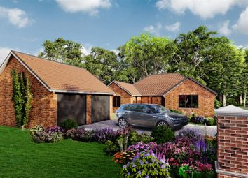 Thumbnail 3 bed detached bungalow for sale in Spinks Lane, Wymondham