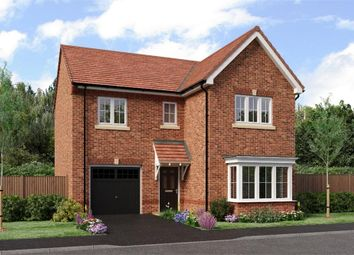 """Thumbnail 4 bedroom detached house for sale in """"The Seeger"""" at Weldon Road, Cramlington"""