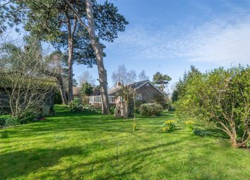 Thumbnail 3 bed detached bungalow for sale in Grove Road, Wells-Next-The-Sea