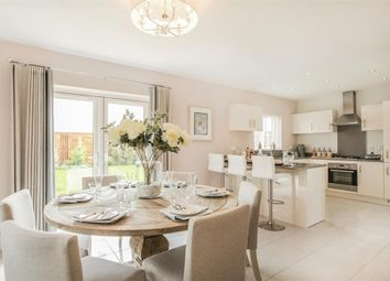 "Thumbnail 3 bedroom semi-detached house for sale in ""Downshire"" at Anstey Road, Alton"