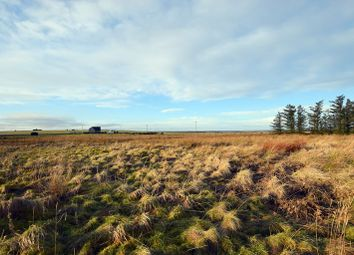 Thumbnail Land for sale in Nordwall Park, Reiss, Wick