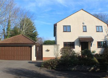 Thumbnail 4 bedroom detached house for sale in Congresbury, North Somerset