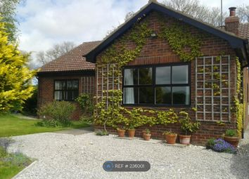 Thumbnail 3 bedroom bungalow to rent in West Lutton, Malton