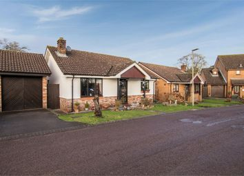 Thumbnail 3 bed detached bungalow for sale in The Post Paddocks, Woolaston, Lydney, Gloucestershire