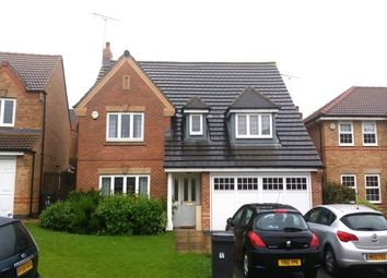 Thumbnail 4 bed detached house to rent in Oxclose Park Gardens, Halfway, Sheffield
