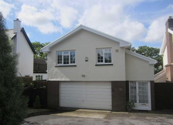 Thumbnail 1 bedroom flat to rent in Hatherleigh Road, Winkleigh