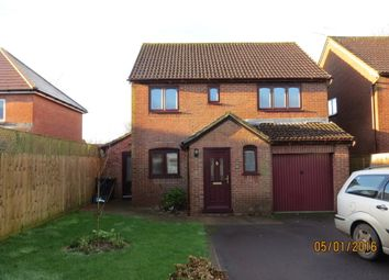 Thumbnail 4 bed detached house to rent in Rutter Close, Shaftesbury, Dorset