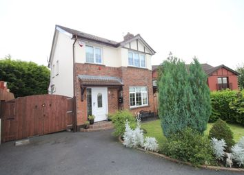 Thumbnail 3 bed detached house for sale in Spruce Hill, Hannahstown, Belfast