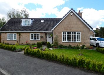 Thumbnail 4 bed bungalow for sale in Forstersteads, Allendale, Hexham