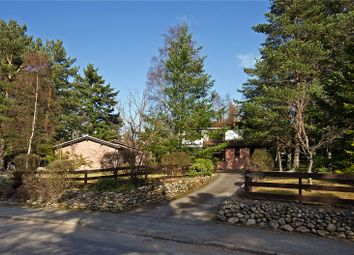 Thumbnail 6 bed detached house for sale in Fern Lodge, 51 Barclay Park, Aboyne, Aberdeenshire