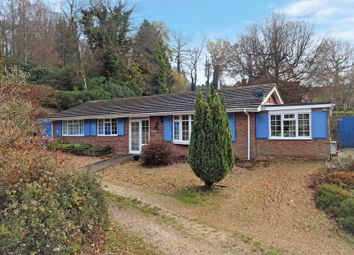 Thumbnail 3 bed bungalow for sale in Azalea Drive, Haslemere