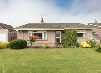 Thumbnail 4 bed detached bungalow for sale in Renny Crescent, Montrose