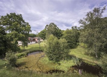 Thumbnail 6 bed detached house for sale in Forest Lane, Hightown Hill, Ringwood, Hampshire