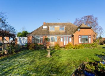 Thumbnail 4 bed bungalow to rent in Mark Cross, Crowborough