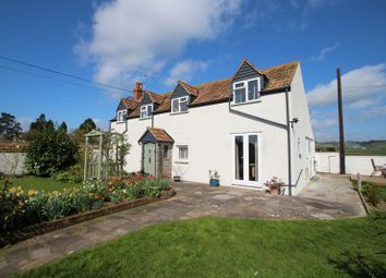 Thumbnail 4 bed detached house for sale in Greylake, Bridgwater